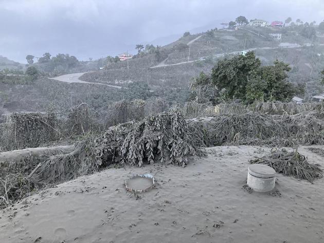 Vue depuis l'observatoire Belmont à Saint-Vincent, alors que l'éruption de La Soufrière se poursuit. Le volcan est masqué par les retombées de cendres et des dépôts sont visibles sur la végétation et les maisons environnantes.