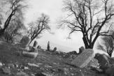«Seule la terre viendra à notre secours», de Serpouhi Hovaghian: quelques feuillets, témoins du génocide arménien