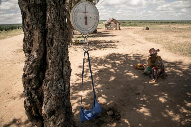 Un pèse-bébé est accroché à une branche d'arbre lors d'une séance de dépistage de la malnutrition dans la commune d'Ifotaka, dans le sud de Madagascar, en décembre 2018.