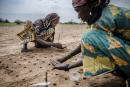 """A woman plants some seeds as part of a tree plantation project to reforest the Sahel in Malamawa village, Zinder Region, Niger on July 30, 2019. In the African Sahel, located between the Sahara Desert and the equator, the climate has long been inhospitable. But now rising temperatures have caused prolonged drought and unpredictable weather patterns, exacerbating food shortages, prompting migration and contributing to instability in countries already beset by crisis. (Photo by Luis TATO / FAO / AFP) / RESTRICTED TO EDITORIAL USE - MANDATORY CREDIT """"AFP PHOTO /FAO/LUIS TATO"""" - NO MARKETING - NO ADVERTISING CAMPAIGNS - DISTRIBUTED AS A SERVICE TO CLIENTS"""