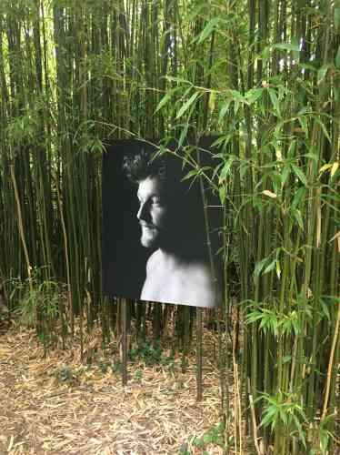 L'artiste, qui a effectué une résidence dans les Hauts-de-France,présentedans les hortillonnages son travail photographique, témoignage de sa« relation au vivant fondée sur la douceur».