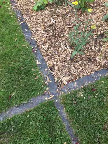 Herbe, plantations et tracé minéral forment une élégante composition géométrique.