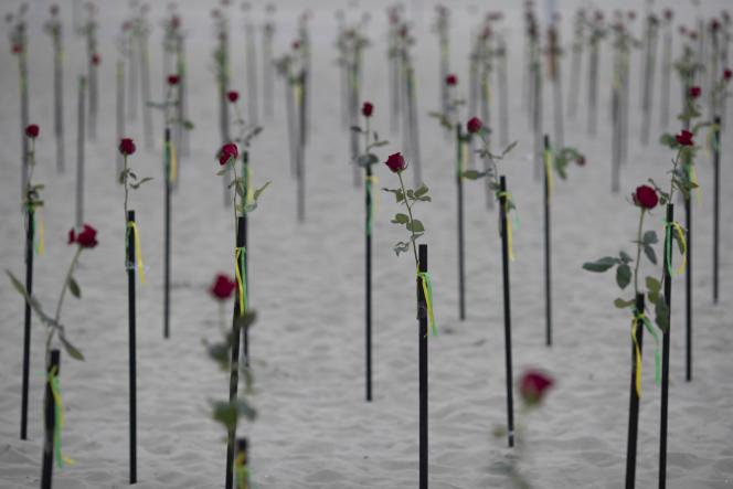 Roses dispersées sur une plage de Copacabana pour rendre hommage aux 500000 morts brésiliens du Covid-19, le 20 juin 2021.