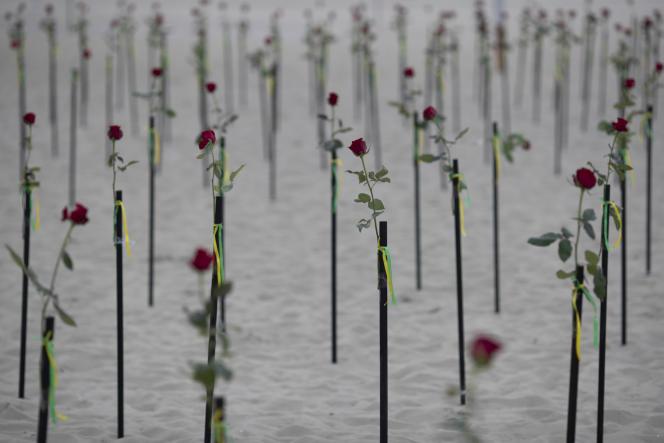 Des roses sur une plage de Copacabana pour rendre hommage aux 500000 morts du Covid-19, le 20 juin 2021, à Rio de Janeiro.