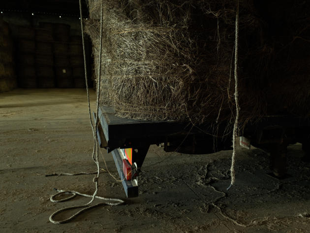 Ballots de pailles de lin prêts à être déchargés et stockés, à l'usine Decock de Hondschoote (Nord), le 10 mai 2021.