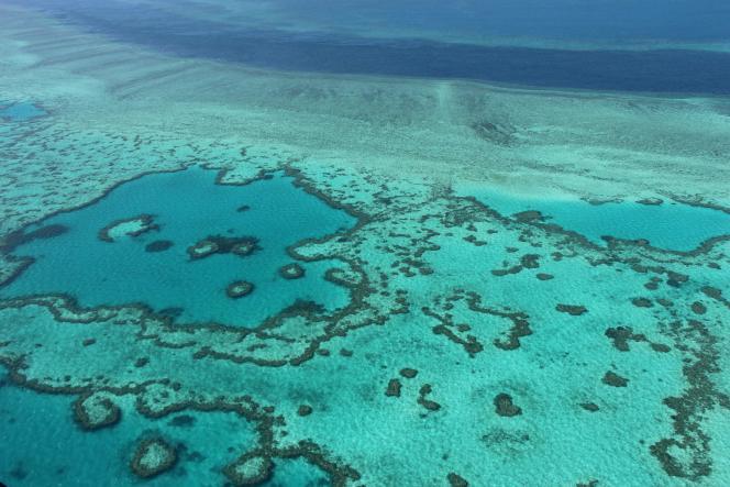 La Grande Barrière de Corail au large des îles Whitsunday, en Australie, en 2014.
