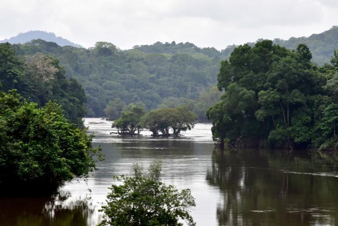 Le fleuve Ogooué traverse tout le Gabon et une partie de sa forêt équatoriale, avant de se jeter dans l'océan Atlantique.