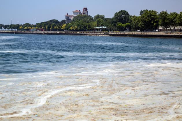 En mer de Marmara, la pollution inquiète le secteur touristique, les plages sont devenues impraticables. Dans la baie de Caddebostan, à Istanbul, en Turquie, le 14 juin 2021.