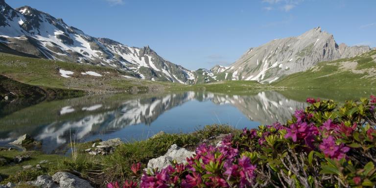 Le lac Jovet dans la réserve naturelle.