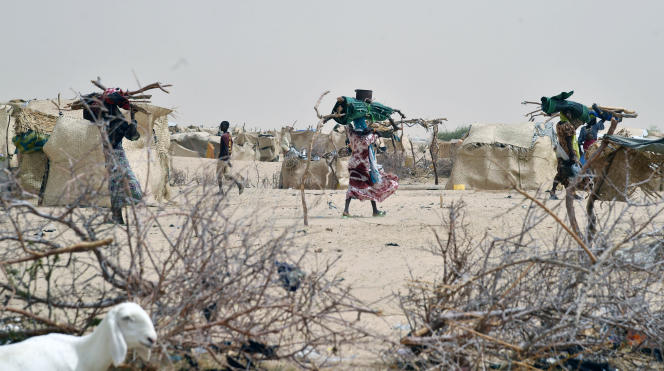 A Kidjendi, près de Diffa, un camp de déplacés du village de Bosso, vidé par les attaques de Boko Haram en juin 2016.