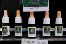 Des flacons d'huile de cannabidiol (CBD) vendus dans les rayons d'une boutique niçoise, le 23 juin.