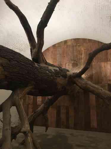 L'œuvre«Sisyphus Casemate», de l'artiste brésilienHenrique Oliveira, occupe une alvéole de l'ancien fort de Sainte-Adresse.