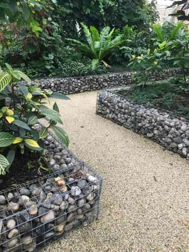 Recréation aménagée dans une serre de l'écosystème d'uneforêt tropicale.