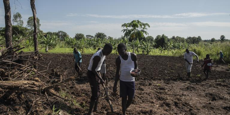 La plupart des habitants de la région travaillent dans l'agriculture, l'un des domaines les plus importants à cet égard au Soudan du Sud
