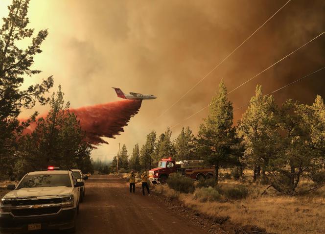 Los bomberos atacan el incendio de Grandview, cerca de Sisters, Oregon.  El domingo 11 de julio de 2021.