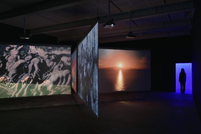 « Subliminal» (2020), à la Galerie Marian Goodman, à Paris.