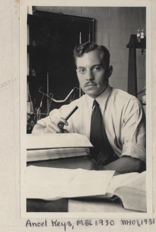 Ancel Keys, à l'Université d'Arizona, vers 1931.