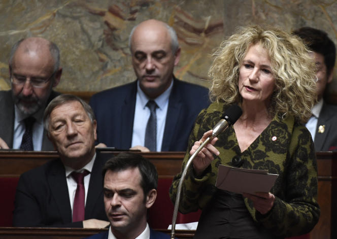 Martine Wonner, députée du Bas-Rhin, à l'Assemblée nationale en novembre 2017.