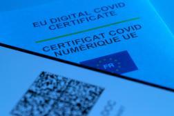 Pour l'instant, les expatriés français n'ont pas accès auQR code du passe sanitaire.