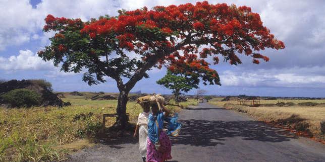 Nathacha Appanah à la recherche de Maurice, terre promise