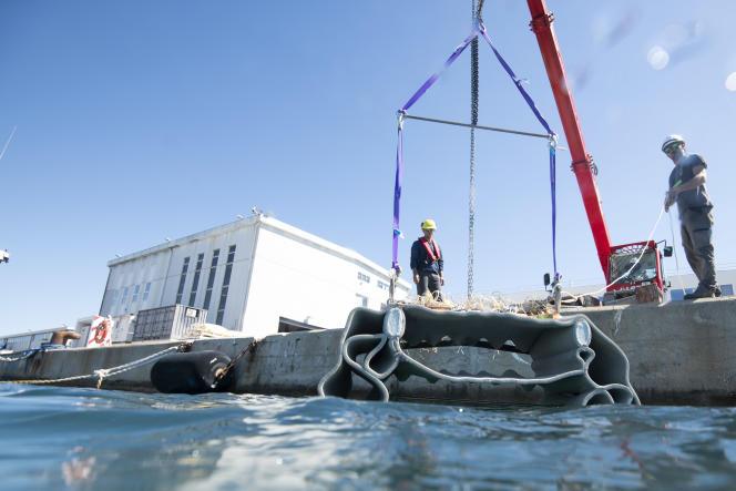 Mise à l'eau d'un bloc de béton imprimé en 3D, sur le quai de l'Ifremer, à La Seyne-sur-Mer, le 21 juillet 2021. Ces blocs visent à recréer des cavités pour abriter les poissons. Chacun pèse environ 200 kg.