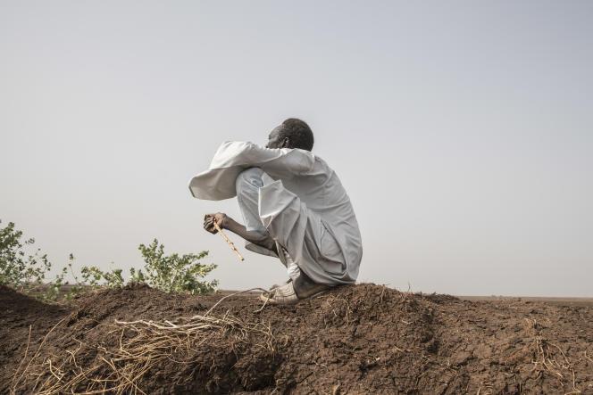 Un agriculteur est assis à côté de l'un des canaux d'irrigation, près d'al-Kamilin, dans l'Etat de Gezira, au Soudan, le 17 juin 2021.
