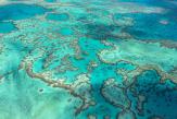 Grande Barrière de corail: l'Australie arrache un sursis de plus auprès de l'Unesco