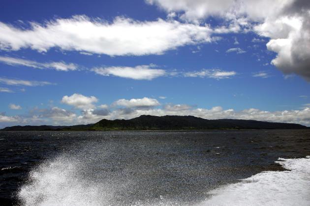 L'île japonaise d'Iriomote, surnommée « les Galapagos de l'Extrême-Orient» pour sa forêt primaire tropicale, a été ajoutée à la liste du Patrimoine mondial de l'Unesco « en raison de ses attributs naturels».