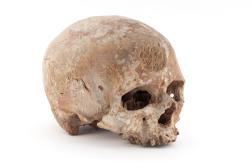 Crâne de Cro-Magnon 1, Les Eyzies-de-Tayac, Dordogne, France, fouilles Louis Lartet, 1868.