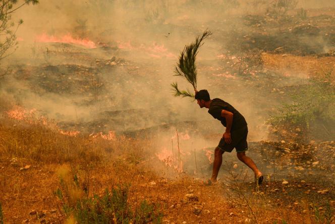 El 29 de julio de 2021, se intentó extinguir una zarza ardiente cerca de la ciudad de Manavkat.
