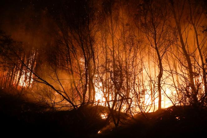 Five villages in the region were evacuated due to a major forest fire.