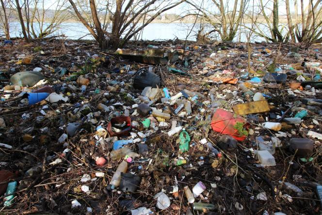 Accumulation de déchets plastiques sur les rives de la Seine, près de Rouen, en mars 2018.