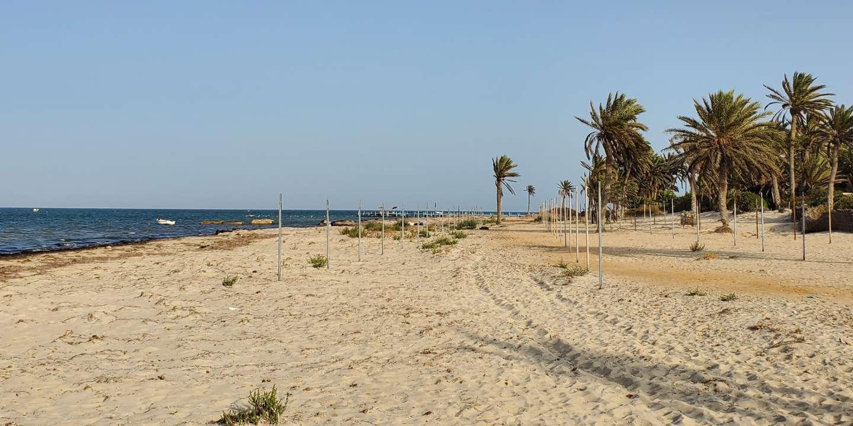 A Djerba, en Tunisie, le tourisme terrassé par le Covid-19