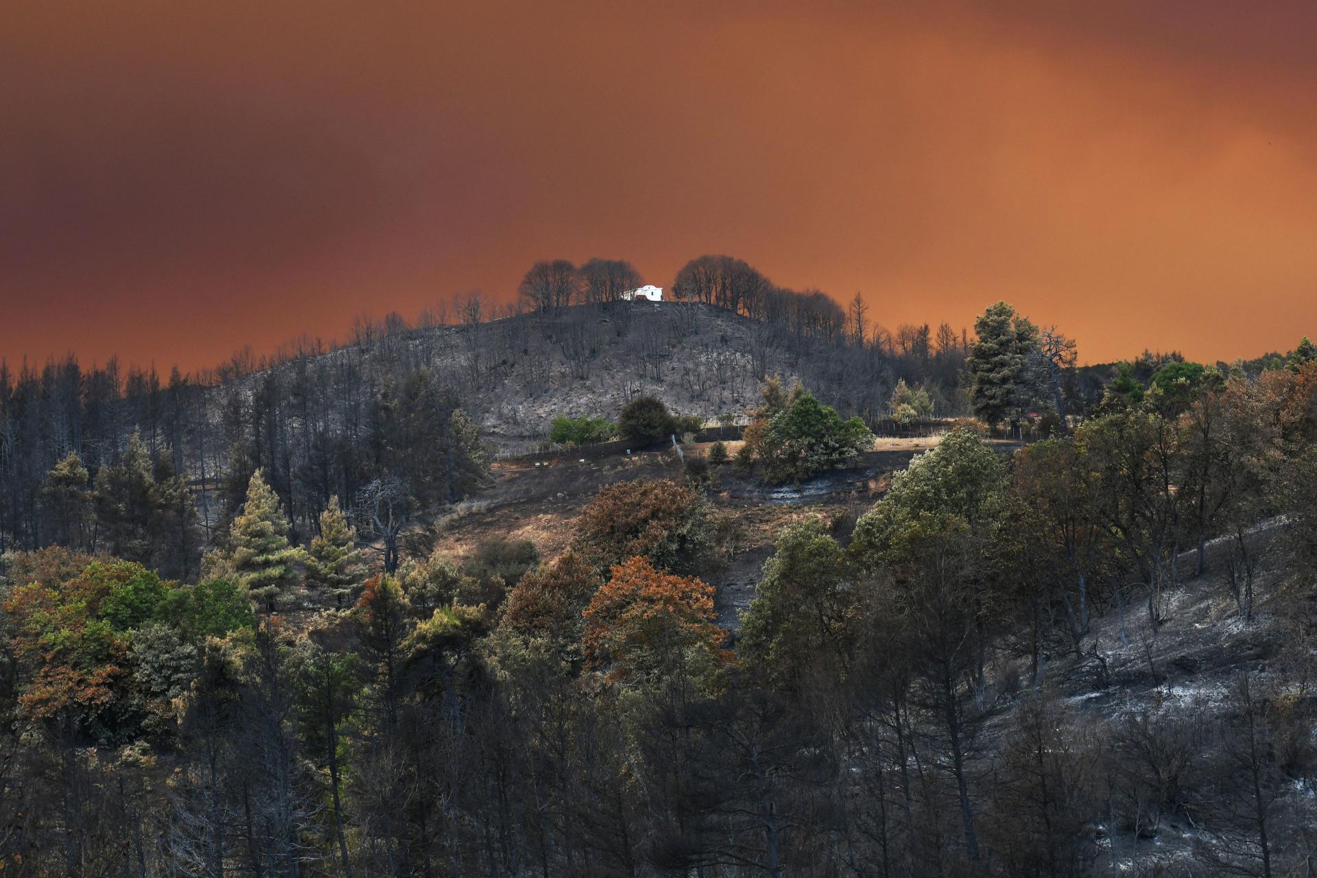 Saat terjadi kebakaran di pulau Evia, Yunani pada 8 Agustus 2021.