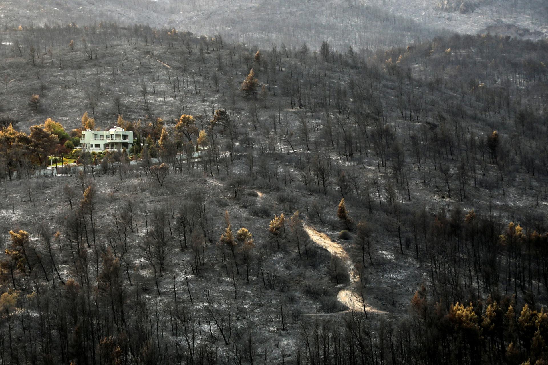 Hutan yang terbakar di dekat Varympompi, pinggiran kota Athena, 9 Agustus 2021.
