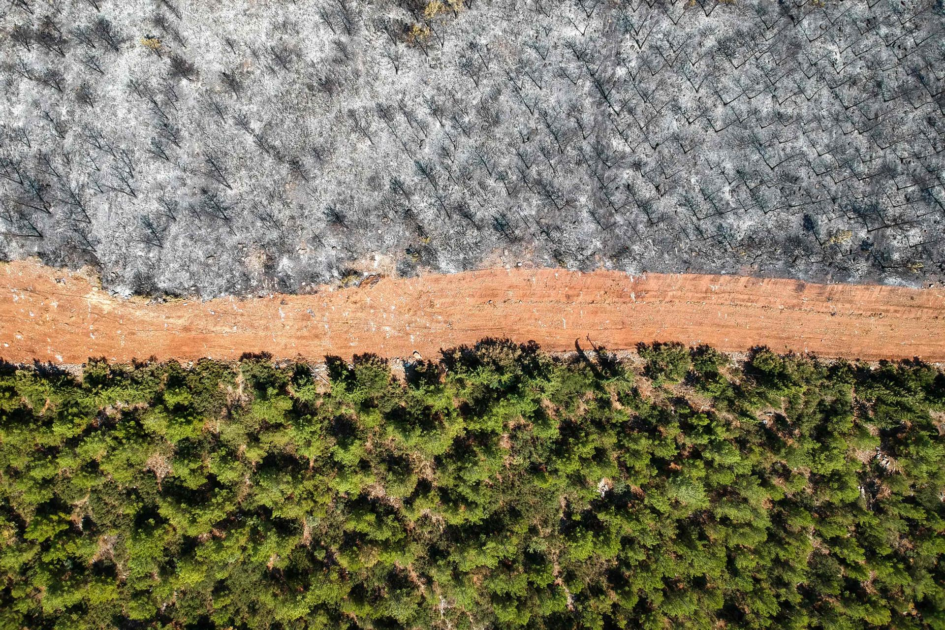 Foto udara diambil di wilayah Mugla, Turki pada 7 Agustus 2021. Jalan hutan ini sempat menjadi titik api.