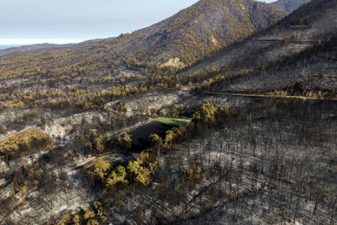 Di Yunani, lebih dari 100.000 hektar telah dilanda kebakaran sejak akhir Juli.