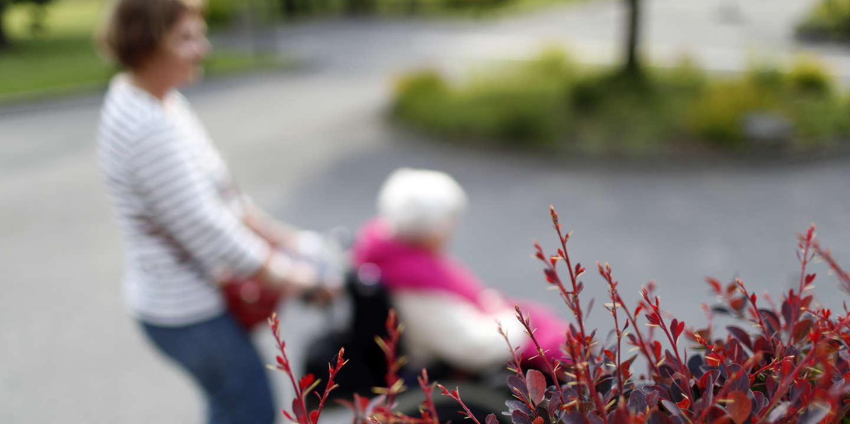 Grand âge et dépendance : le gouvernement mise sur l'habitat inclusif