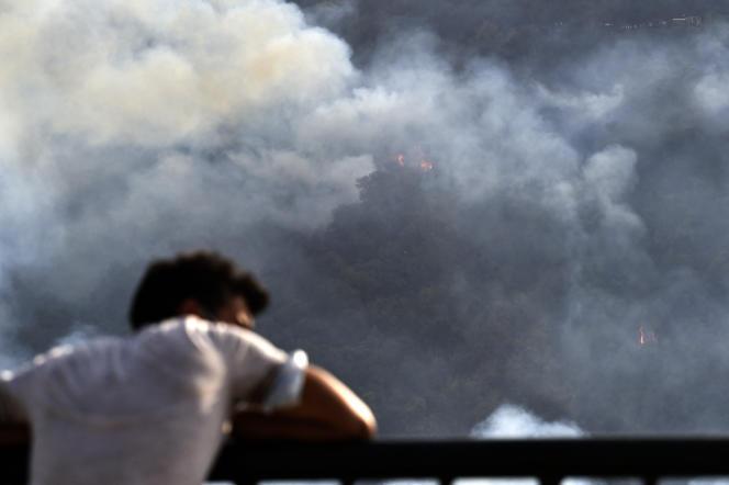 Des feux ravagent la forêt près du village d'Aït Daoud, dans le nord de l'Algérie, le 13août 2021.