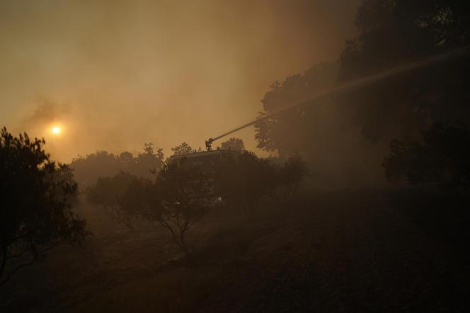 Des pompiers tentent d'éteindre l'incendie près du Luc, dans le Var, mercredi 18 août 2021.
