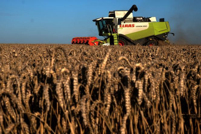 Moisson de blé à Saint-Philbert-sur-Risle (Eure), le 13 août 2021.