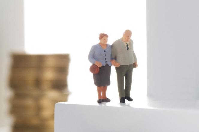 Le principal dispositif de pension minimale est le minimum contributif.