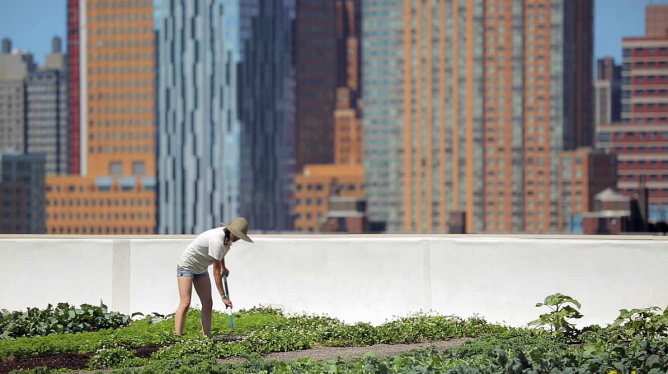 « Sur les toits des villes », sur Arte : à New York, on trinque avec les nuages