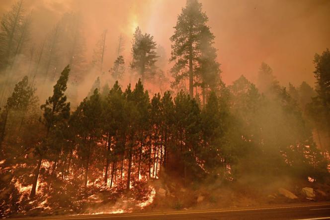 Le Caldor Fire a parcouru des centaines de kilomètres carrés, rongeant l'autouroute 50, près de Kyburz en Californie, le 26 août 2021.