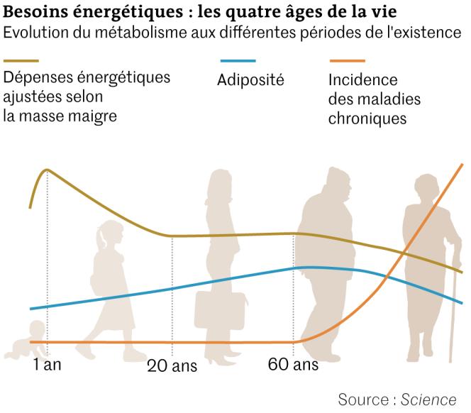 https://img.lemde.fr/2021/08/30/0/0/1050/921/664/0/75/0/67408f0_675505780-web-science-3321-metabolisme.png