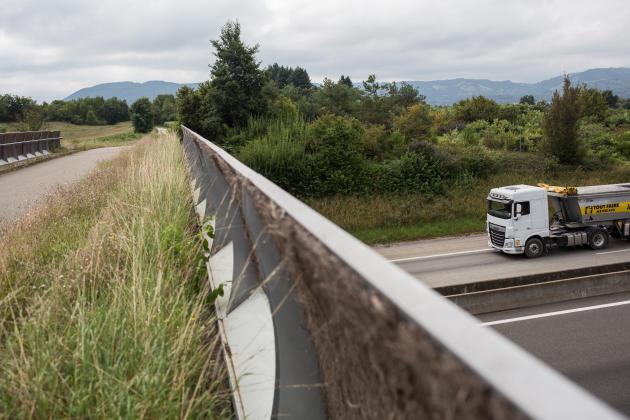 Le pont qui enjambe la départementale 119 a été équipé de barrières opacifiées et de zones herbeuses pour faciliter le passage des animaux, sur la plaine de la Bièvre (Isère) le 24 août 2021.