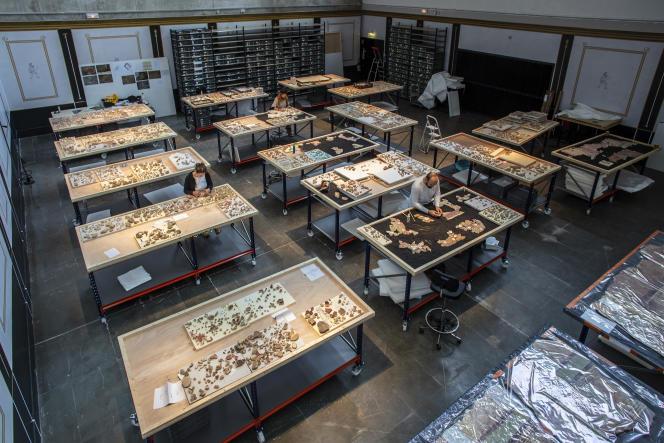 Archéologues et restaurateurs s'attèlent à reconstituer, dans le laboratoire du musée départemental de l'Arles antique, lesenduits peints retrouvés à Arles sur le site de la Verrerie.