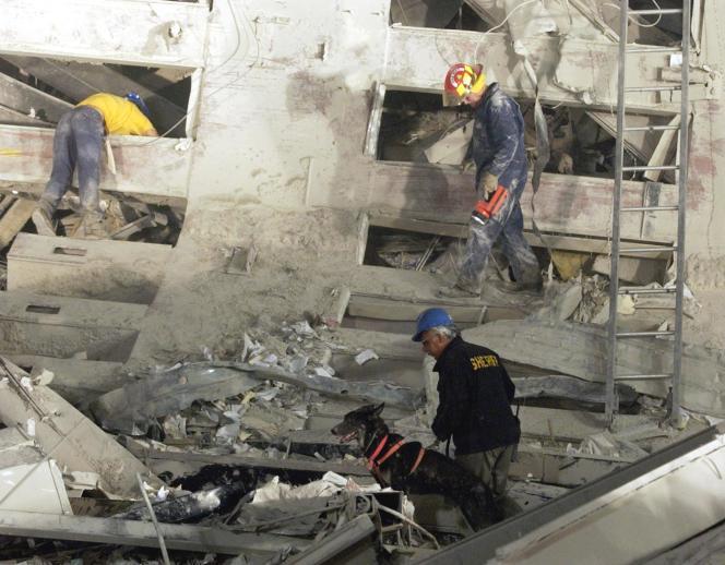 Des sauveteurs accompagnés d'un chien, à la recherche de survivants, dans les ruines du World Trade Center, à New York, le 12 septembre 2001.