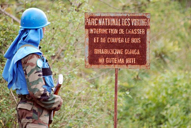 Un casque bleu de la mission de l'ONU en RDC (Monusco) dans le parc national des Virunga, en mars 2014.