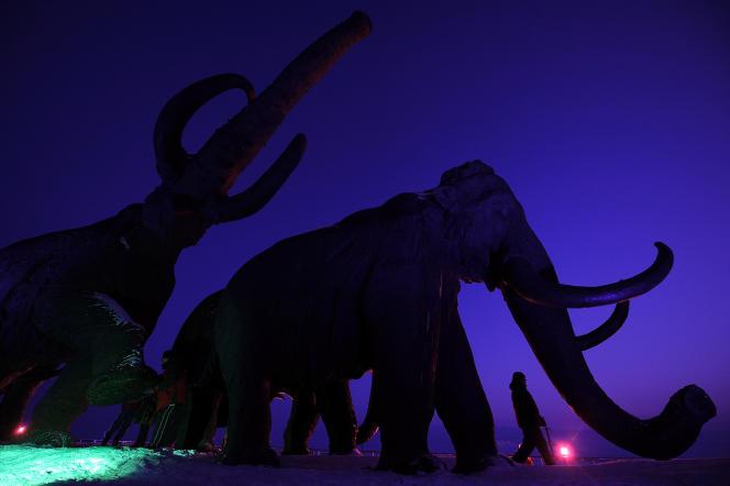 La société Colossal veut créer un « éléphant résistant au froid, avec tous les traits biologiques fondamentaux» du mammouth.